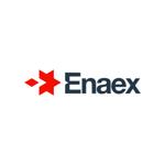 groundhog_enaex